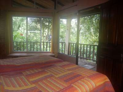 Image 11   Boutique Lodge in Tropical Botanical Gardens in Costa Rica 214184