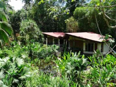 Image 2   Boutique Lodge in Tropical Botanical Gardens in Costa Rica 214184