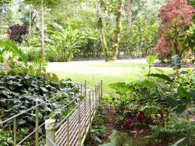 Image 6   Boutique Lodge in Tropical Botanical Gardens in Costa Rica 214184