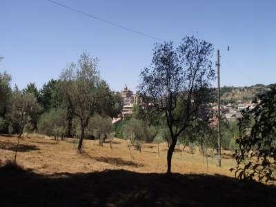 Image 23   7 bedroom villa for sale with 1.45 hectares of land, Ortigia, Piazza Armerina, Enna, Sicily 214446