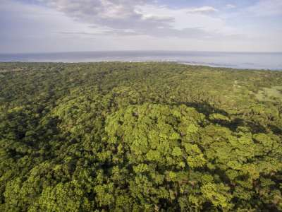 Image 14 | Plot of land for sale with 14 hectares of land, Playa Negra, Guanacaste 214635