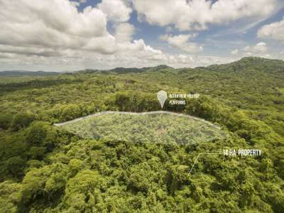 Image 5 | Plot of land for sale with 14 hectares of land, Playa Negra, Guanacaste 214635