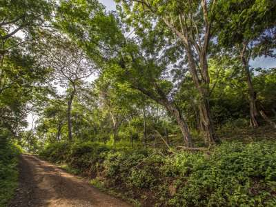 Image 9 | Plot of land for sale with 14 hectares of land, Playa Negra, Guanacaste 214635
