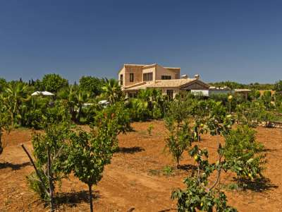 Image 19 | 4 bedroom farmhouse for sale with 3 hectares of land, Llucmajor, Southern Mallorca, Mallorca 218558