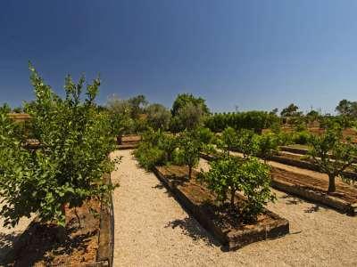 Image 22 | 4 bedroom farmhouse for sale with 3 hectares of land, Llucmajor, Southern Mallorca, Mallorca 218558