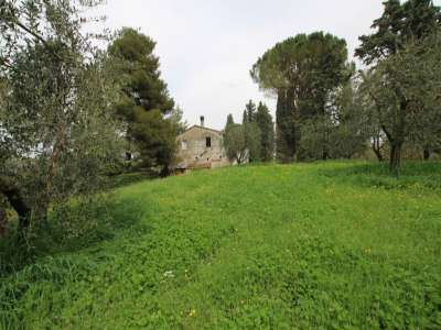 Image 3 | 3 bedroom farmhouse for sale with 13 hectares of land, Peccioli, Pisa, Tuscany 220061