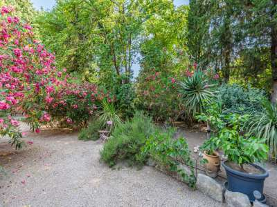 Image 9 | 5 bedroom house for sale with 1,110m2 of land, Fontvieille, Bouches-du-Rhone , Provence 221095