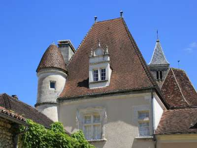 Image 4 | 9 bedroom French chateau for sale, Riberac, Dordogne , Aquitaine 221915