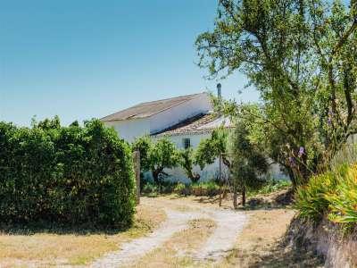 Image 23 | 4 bedroom farmhouse for sale with 18.11 hectares of land, Ardres, Pas-de-Calais , Nord-Pas-de-Calais 223185