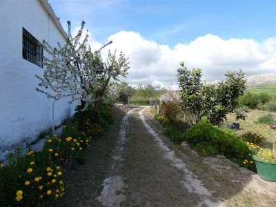 Image 25 | 4 bedroom farmhouse for sale with 18.11 hectares of land, Ardres, Pas-de-Calais , Nord-Pas-de-Calais 223185