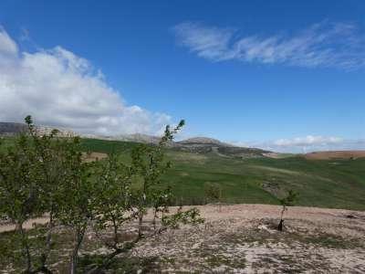 Image 28 | 4 bedroom farmhouse for sale with 18.11 hectares of land, Ardres, Pas-de-Calais , Nord-Pas-de-Calais 223185