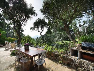 Image 11   5 bedroom villa for sale with 1.41 hectares of land, Pollenca, Northern Mallorca, Mallorca 224334