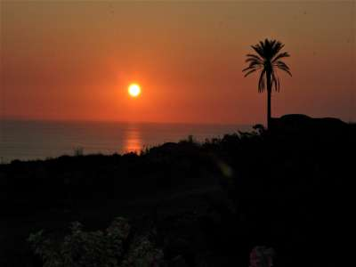Image 20   2 bedroom villa for sale with 0.4 hectares of land, Pantelleria, Trapani, Sicily 224352