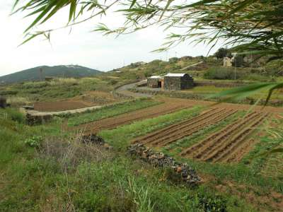 Image 22   2 bedroom villa for sale with 0.4 hectares of land, Pantelleria, Trapani, Sicily 224352