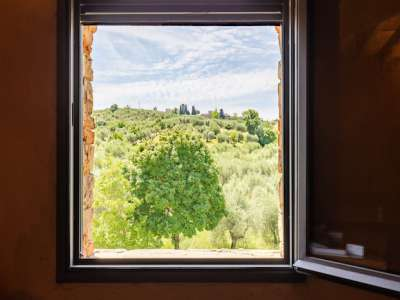 Image 13 | Farmhouse for sale with 30 hectares of land, Florence, Chianti Wine Region 224581