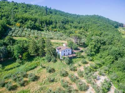 Image 29 | Farmhouse for sale with 30 hectares of land, Florence, Chianti Wine Region 224581