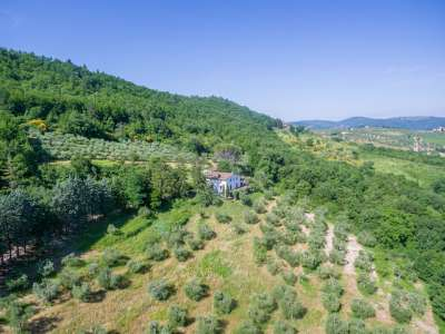 Image 31 | Farmhouse for sale with 30 hectares of land, Florence, Chianti Wine Region 224581