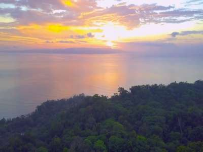 Image 7   4 bedroom house for sale with 465m2 of land, Osa Peninsula, Puntarenas 224814