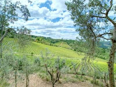 Image 36 | 6 bedroom villa for sale, Chianti, Florence, Chianti Wine Region 225107