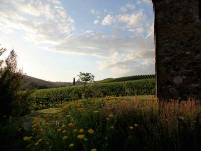 Image 18   7 bedroom villa for sale with 1.3 hectares of land, Montepulciano, Siena, Chianti Wine Region 225431