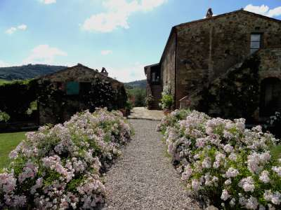 Image 28   7 bedroom villa for sale with 1.3 hectares of land, Montepulciano, Siena, Chianti Wine Region 225431