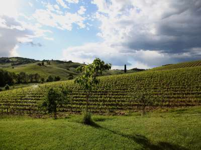 Image 30   7 bedroom villa for sale with 1.3 hectares of land, Montepulciano, Siena, Chianti Wine Region 225431