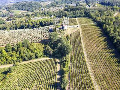 Image 6   4 bedroom farmhouse for sale with 27.6 hectares of land, Greve in Chianti, Florence, Chianti Wine Region 225842