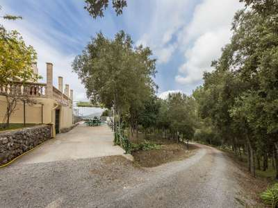 Image 10   3 bedroom villa for sale with 2.5 hectares of land, Alcudia, Northern Mallorca, Mallorca 225945