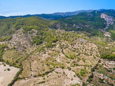 Image 14 | 11 bedroom house for sale with 94 hectares of land, Alaro, Central Mallorca, Mallorca 226231