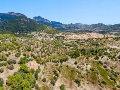 Image 15 | 11 bedroom house for sale with 94 hectares of land, Alaro, Central Mallorca, Mallorca 226231