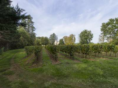 Image 2 | 8 bedroom French chateau for sale with 7 hectares of land, Prayssac, Lot , Midi-Pyrenees 226713