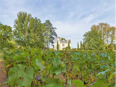 Image 25 | 8 bedroom French chateau for sale with 7 hectares of land, Prayssac, Lot , Midi-Pyrenees 226713