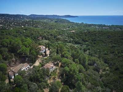 Image 13 | 13 bedroom villa for sale with 10.03 hectares of land, Cavalaire sur Mer, Var , Cote d'Azur French Riviera 227411