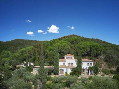 Image 3 | 13 bedroom villa for sale with 10.03 hectares of land, Cavalaire sur Mer, Var , Cote d'Azur French Riviera 227411