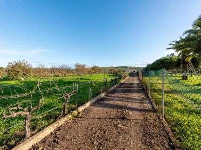 Image 29 | 3 bedroom villa for sale with 0.7 hectares of land, Lagos, Western Algarve, Algarve 227424