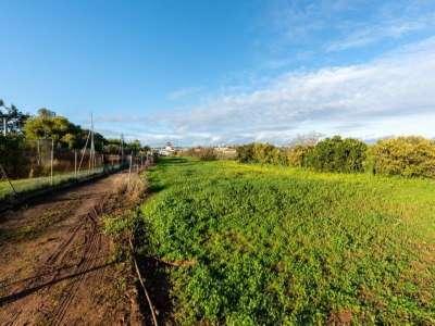 Image 30 | 3 bedroom villa for sale with 0.7 hectares of land, Lagos, Western Algarve, Algarve 227424