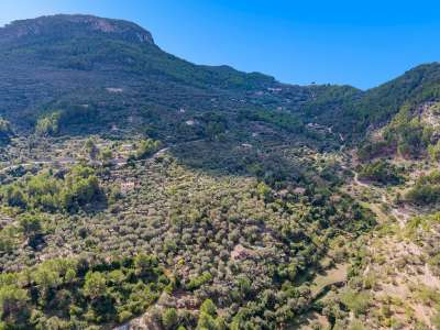 Image 21   8 bedroom villa for sale with 0.61 hectares of land, Soller, North Western Mallorca, Mallorca 227778