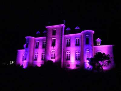 Image 17   8 bedroom French chateau for sale with 32 hectares of land, Laval, Mayenne , Pays-de-la-Loire 228033