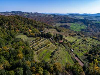 Image 3   House for sale with 164 hectares of land, Volterra, Pisa, Tuscany 228078