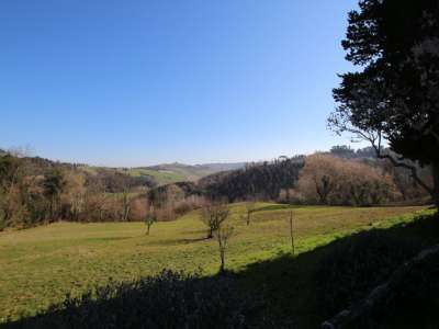 Image 13   6 bedroom farmhouse for sale with 93 hectares of land, Peccioli, Pisa, Tuscany 228608