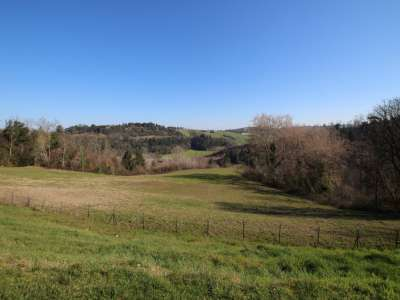 Image 14   6 bedroom farmhouse for sale with 93 hectares of land, Peccioli, Pisa, Tuscany 228608