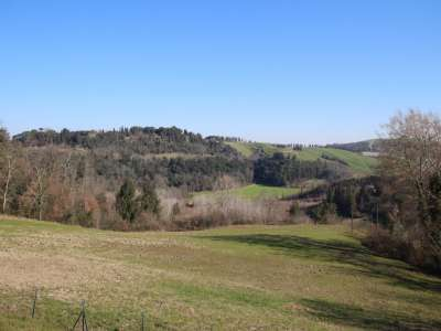 Image 15   6 bedroom farmhouse for sale with 93 hectares of land, Peccioli, Pisa, Tuscany 228608