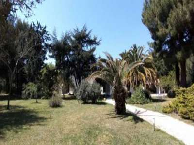 Image 4 | 6 bedroom villa for sale with 0.79 hectares of land, Ceret, Pyrenees-Orientales , Pyrenees Vallespir 229355