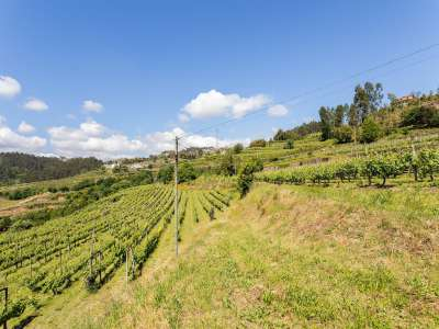 Image 24   5 bedroom villa for sale with 6.73 hectares of land, Sobrado E Bairros, CASTELO DE PAIVA, Aveiro District, Central Portugal 229536