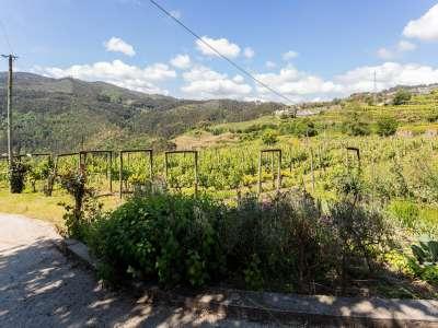Image 25   5 bedroom villa for sale with 6.73 hectares of land, Sobrado E Bairros, CASTELO DE PAIVA, Aveiro District, Central Portugal 229536