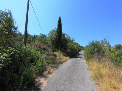 Image 3 | Plot of land for sale with 0.98 hectares of land, Kotor, Coastal Montenegro 229592