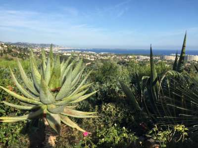 Image 25 | 3 bedroom villa for sale with 0.21 hectares of land, Mandelieu la Napoule, Alpes-Maritimes 6, French Riviera 229753