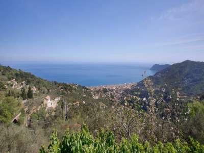 Image 9 | 4 bedroom villa for sale, Alassio, Savona, Liguria 229802