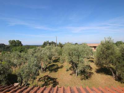 Image 2   5 bedroom villa for sale with 0.86 hectares of land, Montescudaio, Pisa, Tuscany 229853