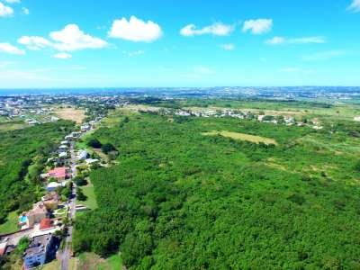 Image 1 | Plot of land for sale with 6.79 hectares of land, South Ridge, Christ Church 230014